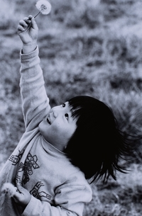 たんぽぽを持つ日本人男の子 B/Wの写真素材 [FYI03163355]