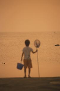 葉山の海と網を持つ日本人の男の子の写真素材 [FYI03163409]