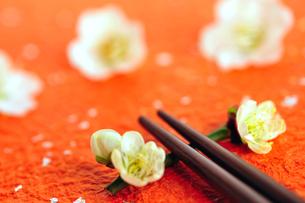 梅の花の箸置きと箸の写真素材 [FYI03163653]