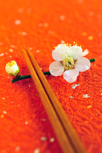 梅の花の箸置きと箸の写真素材 [FYI03163654]