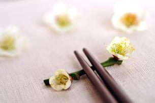 梅の花の箸置きと箸の写真素材 [FYI03163655]