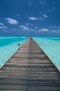 長い桟橋と青い海の写真素材 [FYI03163656]