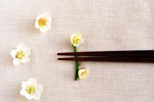 梅の花の箸置きと箸の写真素材 [FYI03163657]