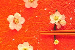 梅の花の箸置きと箸の写真素材 [FYI03163659]
