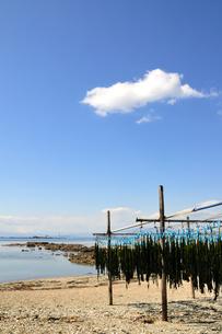 相模湾のワカメ干しと青空と雲 湘南の写真素材 [FYI03163679]
