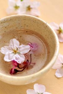 桜茶と桜の花の写真素材 [FYI03163694]