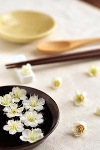 梅の花とテーブルセットの写真素材 [FYI03163701]