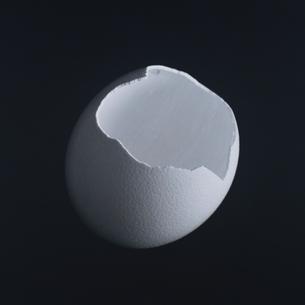 ダチョウの卵 B/Wの写真素材 [FYI03164038]