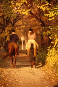 馬に乗る2人の後姿 ニューヨーク アメリカの写真素材 [FYI03164154]
