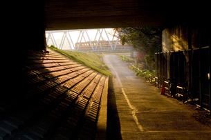 高架下から見える電車と道の写真素材 [FYI03164408]