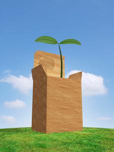 芝生の丘に置かれた箱から新芽のイラスト素材 [FYI03165583]
