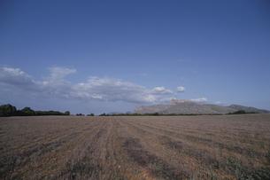 マヨルカ島の荒野 スペインの写真素材 [FYI03165911]