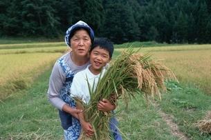 稲刈りをする日本人祖母と孫の写真素材 [FYI03166099]