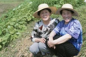 2人の日本人中高年女性の写真素材 [FYI03166160]