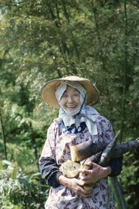 竹の子収穫の写真素材 [FYI03166349]