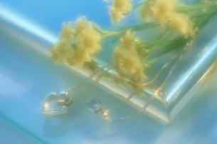 2本のネックレスと花(黄色)の写真素材 [FYI03166565]
