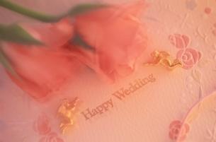 花とカードの写真素材 [FYI03166586]