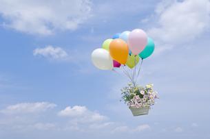 空を飛ぶ風船と花かごの写真素材 [FYI03166810]