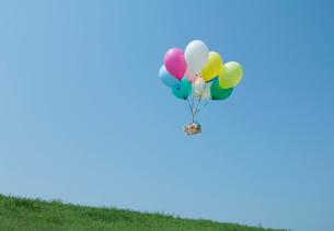 風船に運ばれるギフトボックスの写真素材 [FYI03166821]