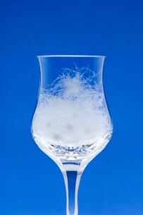 グラスの中の羽毛の写真素材 [FYI03166855]