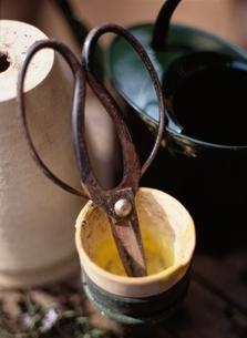 ガーデニングのはさみと植木鉢の写真素材 [FYI03166867]