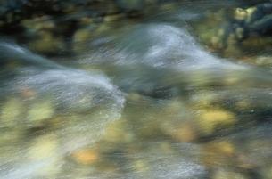 川の水流 上高地 長野県の写真素材 [FYI03166877]