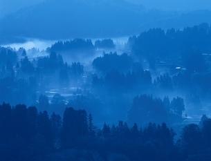森林の朝霧(青) 山越市 新潟県の写真素材 [FYI03166885]