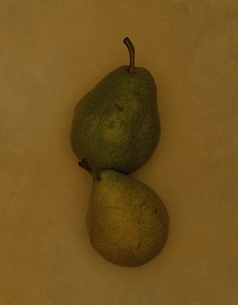 Pearの写真素材 [FYI03167123]