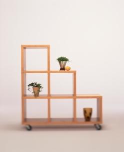 観葉植物と花瓶の置かれた階段状の棚の写真素材 [FYI03167235]