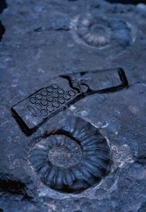 携帯電話の化石・アンモナイトの写真素材 [FYI03168208]