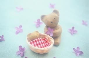 クマの親子の人形の写真素材 [FYI03168442]