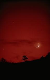 月と金星の写真素材 [FYI03168493]