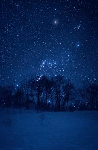 雪原とオリオン座   新潟県の写真素材 [FYI03168505]