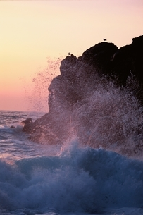 波と岩   北海道の写真素材 [FYI03168645]