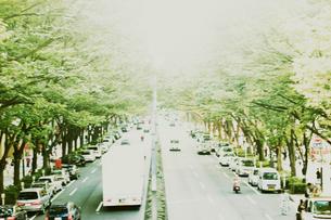 道路脇に並ぶ車の写真素材 [FYI03169115]