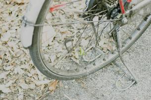 自転車の写真素材 [FYI03169156]