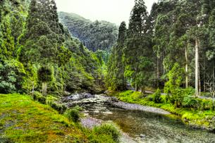 山間の渓流の写真素材 [FYI03169461]