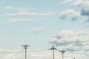 雲と電灯の写真素材 [FYI03169484]