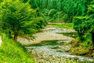 山間の渓流の写真素材 [FYI03169504]