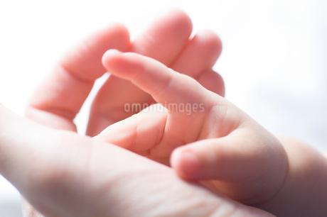 親の手に乗せた赤ちゃんの手の写真素材 [FYI03169933]