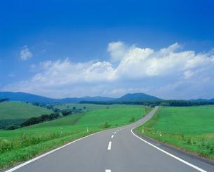 草原に続く道の写真素材 [FYI03170034]