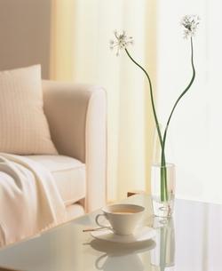 窓辺のテーブルにカップと植物の写真素材 [FYI03170366]
