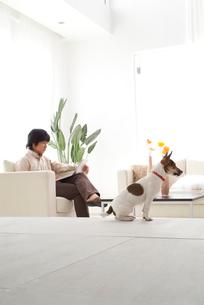 リビングで雑誌を読む男性と犬の写真素材 [FYI03170497]