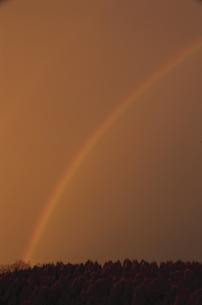 夕焼けと虹の写真素材 [FYI03170563]