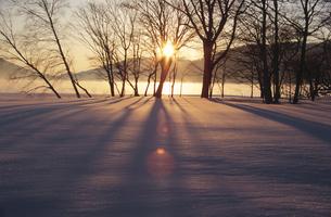 朝日の雪景色の写真素材 [FYI03170613]