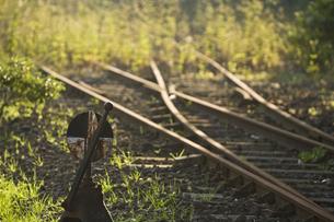 廃線の線路の写真素材 [FYI03170737]