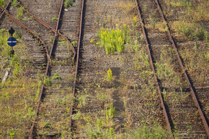 廃線の線路の写真素材 [FYI03170742]