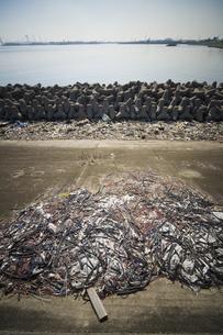 海岸に捨てられたゴミの写真素材 [FYI03170745]