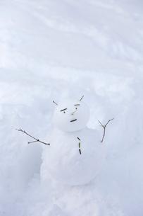 雪原の雪だるまの写真素材 [FYI03171035]