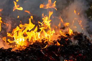 燃え上がる焚き火の炎の写真素材 [FYI03171049]